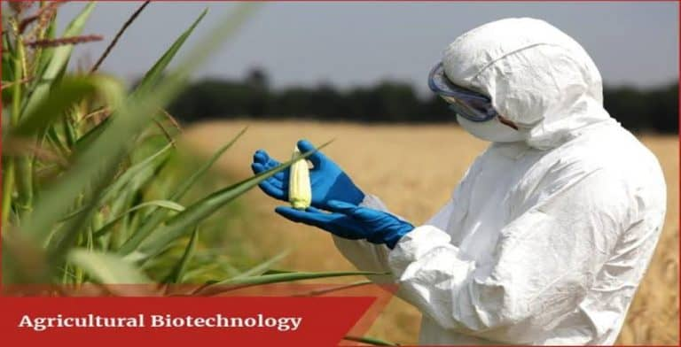 Agrobiotechnology can be A Success Mantra or Menace?