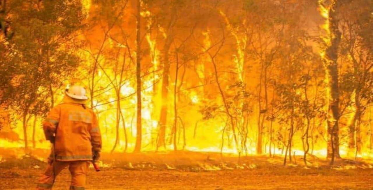 PHOTO: The increased fire severity affects all seasons but in particular spring, which means that, on average, the bushfire season is starting earlier. (News Video)